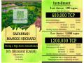 mango-farm-lot-bataan-small-4