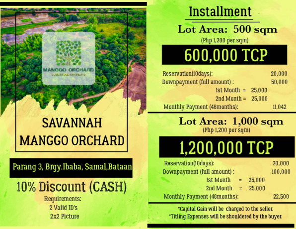 mango-farm-lot-bataan-big-4