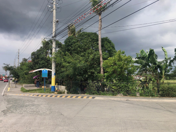 vacant-lot-for-sale-in-bacoor-city-big-1