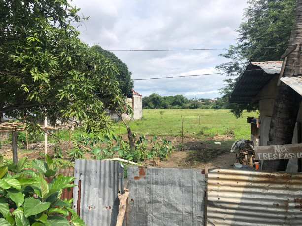 vacant-lot-for-sale-in-bacoor-city-big-3
