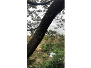 Vacant Lot for Sale in Dasmariñas, Cavite