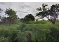expansive-vacant-lot-for-sale-in-dasmarinas-cavite-small-3
