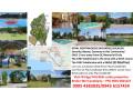 royal-northwoods-budget-residential-golf-lots-near-manila-small-0