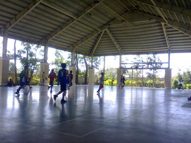 royale-tagaytay-estates-lots-ph-3-big-1