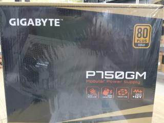 GIGABYTE P750GM MODULAR POWER SUPPLY