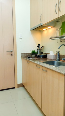 1-br-unit-for-sale-back-of-sm-sucat-and-near-naia-terminal-1-big-2