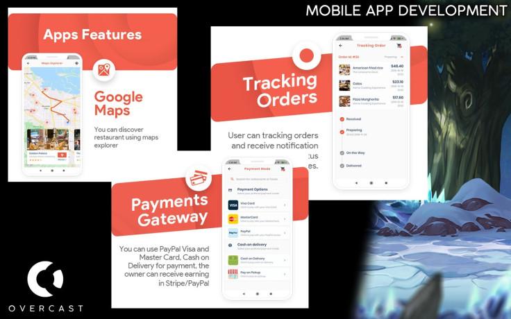 software-and-mobile-app-developer-game-and-website-developer-and-more-big-3
