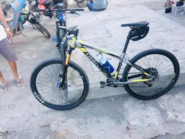 giant-mountain-bike-big-7