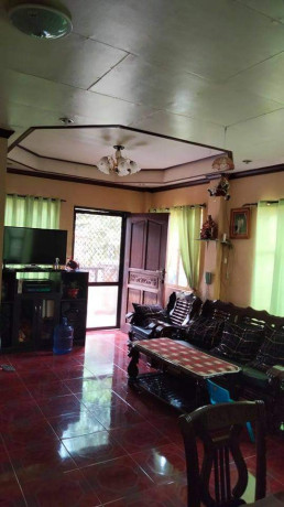 house-and-lot-for-sale-big-0