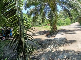 Lot 4 sale Near Bunawan area. boundary of bunawan and panabo