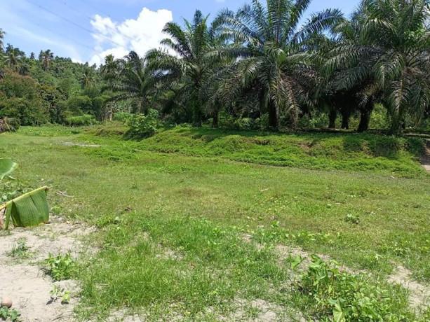 lot-4-sale-near-bunawan-area-boundary-of-bunawan-and-panabo-big-2