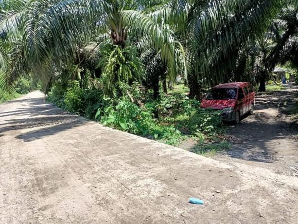 lot-4-sale-near-bunawan-area-boundary-of-bunawan-and-panabo-big-1