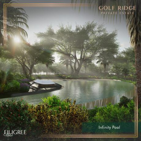 golf-ridge-private-estate-in-mimosa-plus-clark-big-3