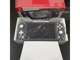 Nintendo switch lite Light gray