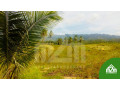 installment-lot-for-sale-in-calangcang-badian-cebu-small-4