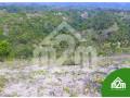 installment-lot-for-sale-in-calangcang-badian-cebu-small-5