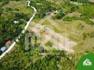 Installment Lot for SALE in Calangcang, Badian, Cebu