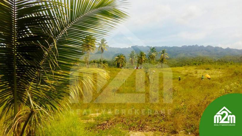 installment-lot-for-sale-in-calangcang-badian-cebu-big-4