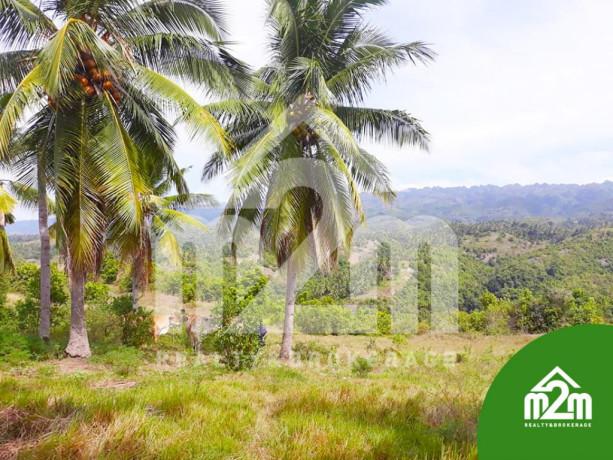 installment-lot-for-sale-in-calangcang-badian-cebu-big-3