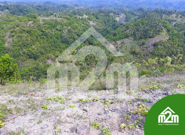 installment-lot-for-sale-in-calangcang-badian-cebu-big-5