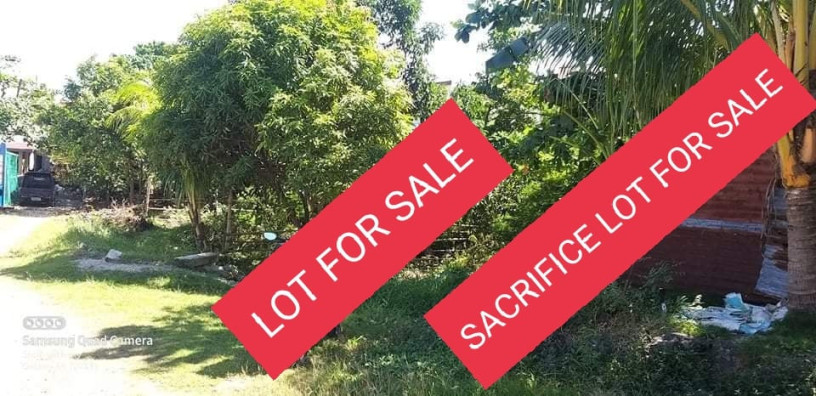 sacrifice-lot-for-sale-in-lapu-lapucebu-big-0