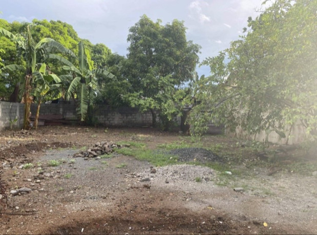 vacant-lot-for-lease-big-2