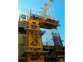 TOWER CRANE (Hammerhead And Luffing Crane)
