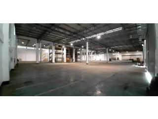 Warehouse II FOR RENT Santa Rosa